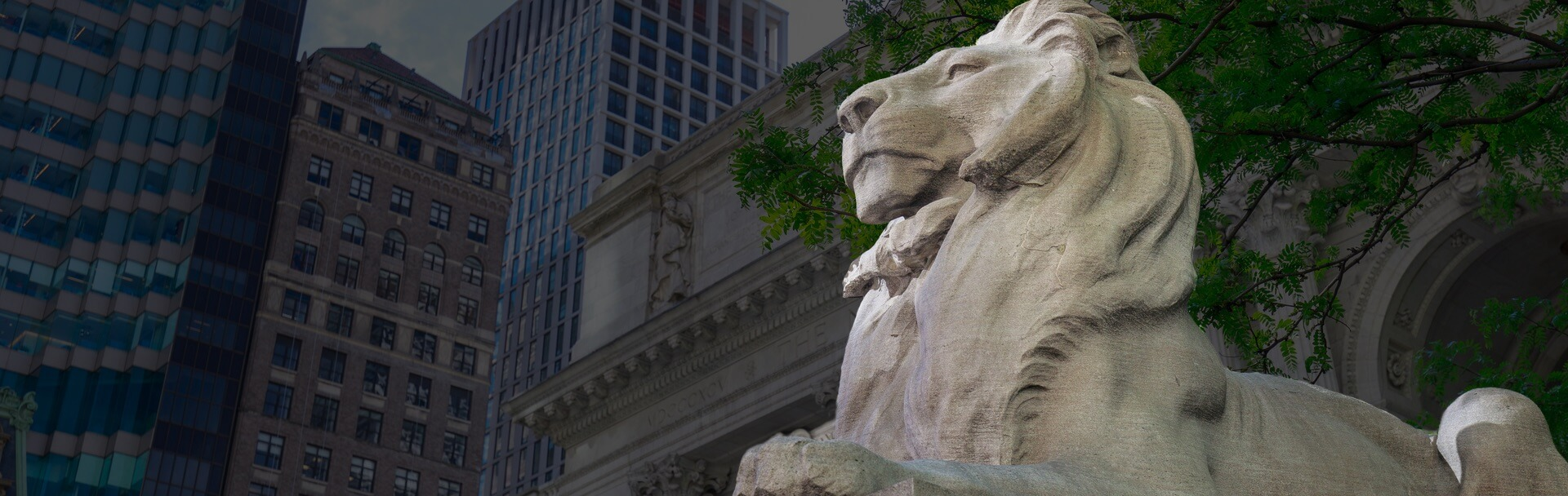 Lion statue outside NYC public library